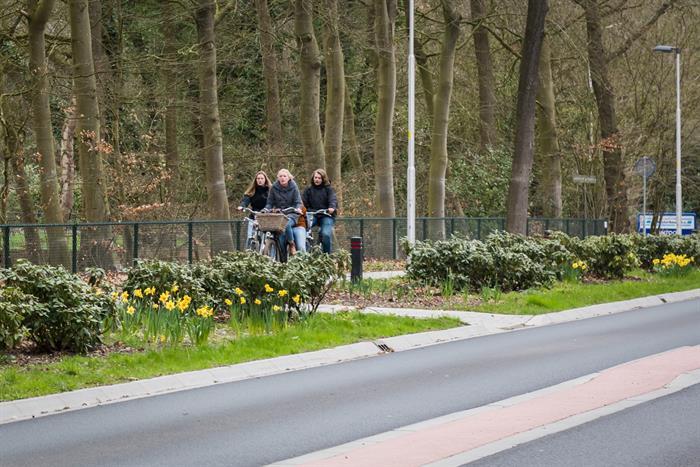 Werkzaamheden N794 Heerderweg – Epe